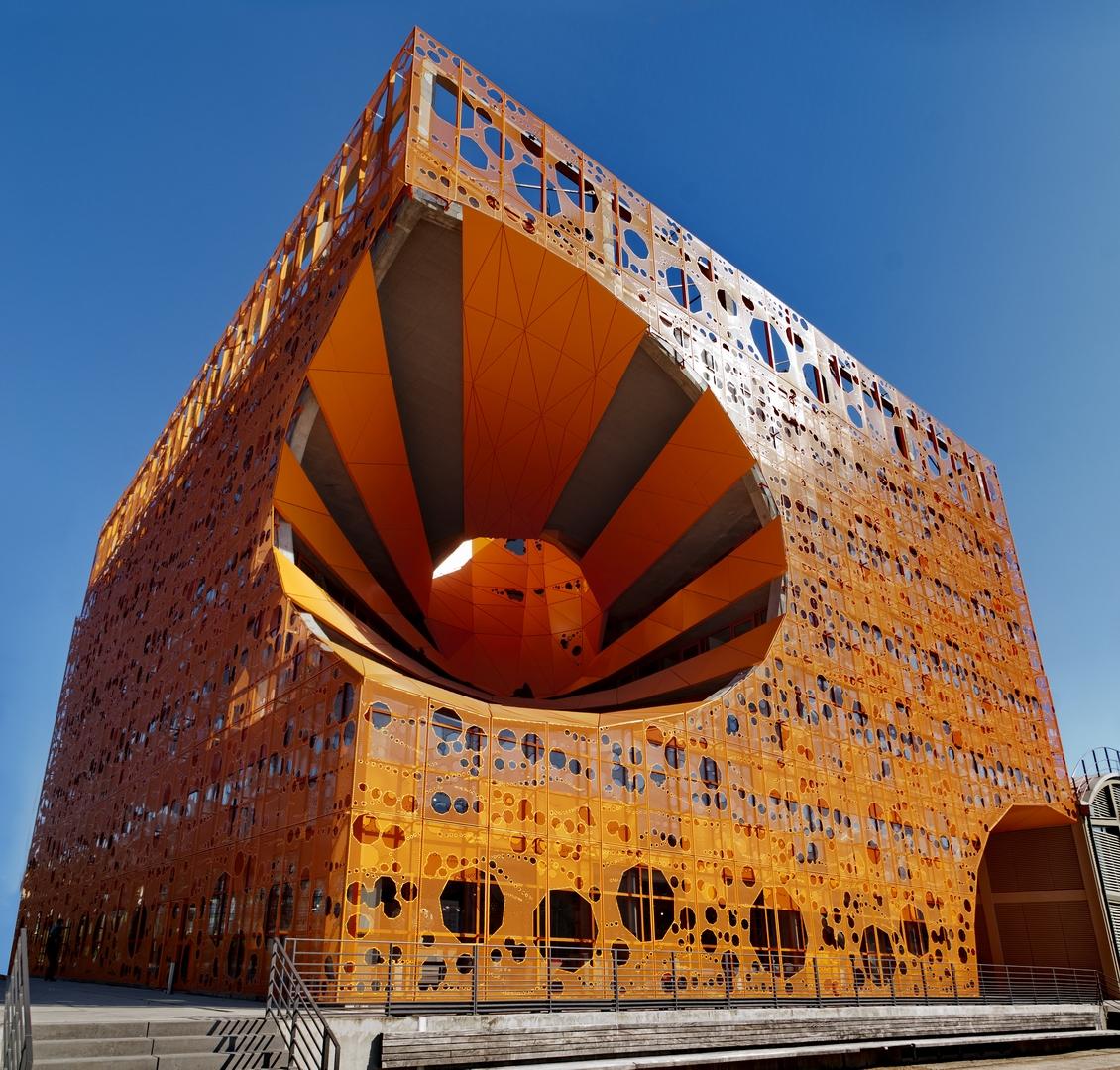 Architecture la confluence centre social mosa ques for Architecture lyon